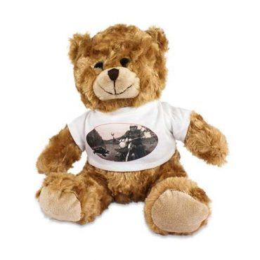 Kuscheltier Teddy mit bedruckten Shirt.
